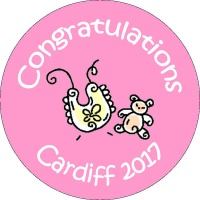 B003 New Baby Badge with bear and bib any text background colour